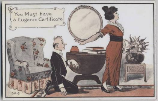 blog-27-november-eugenics-certificate