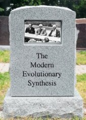 Synthesis_Tombstone