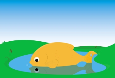 bigfish