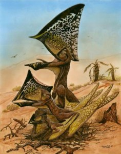 This is a reconstruction of three ontogenetic (growth) stages of the new pterosaur Caiuajara dobruskii. Credit: Maurilio Oliveira/Museu Nacional-UFRJ; CC-BY