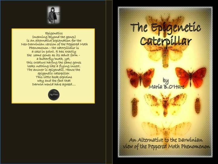 80 page cover epigenetic caterpillar edit