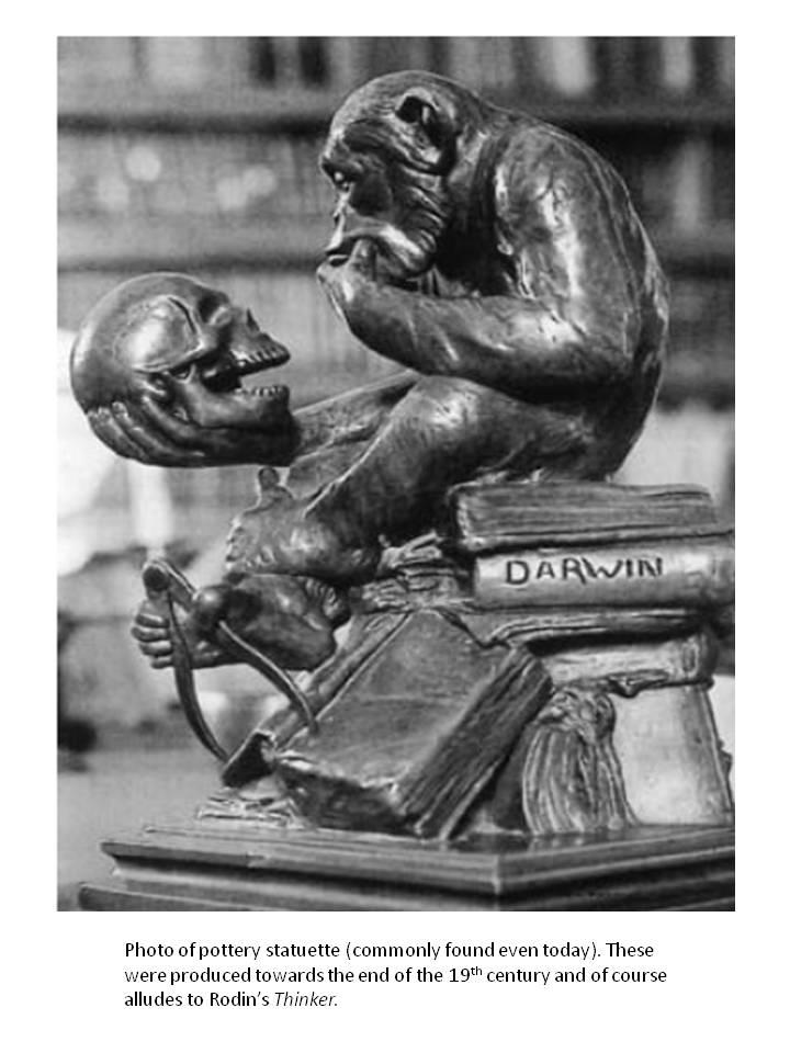 Darwin the thinking monkey