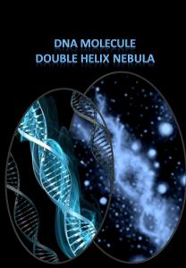 DNA nebula molecule compared