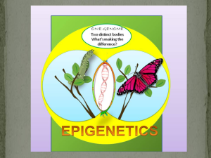 Epigenetic same genome different bodies