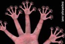 fractal_fingers_01.jpg
