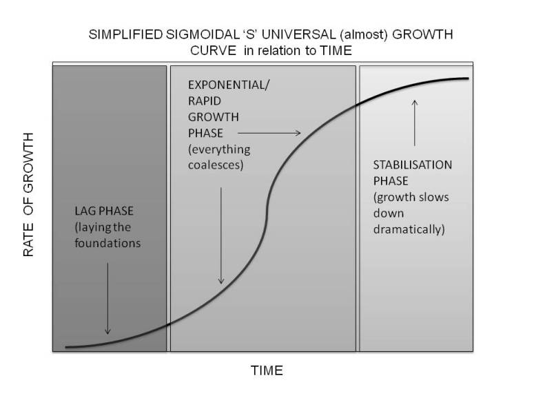 sigmoidal simplified growth curve.jpg