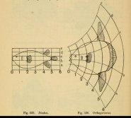 Thompson's diagrams fish
